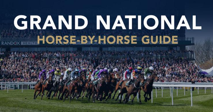 Grand National Pinsticker's Guide