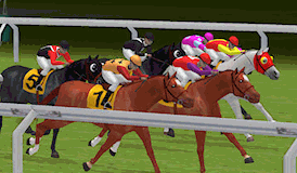online casino tipps hold your horses